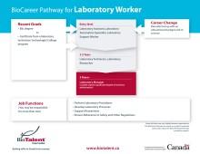 career pathways info graphic