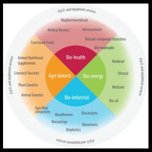 Bio-economy sub-sectors_2018