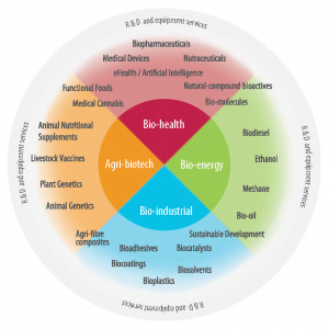 Bio-economy sub-sectors_2019