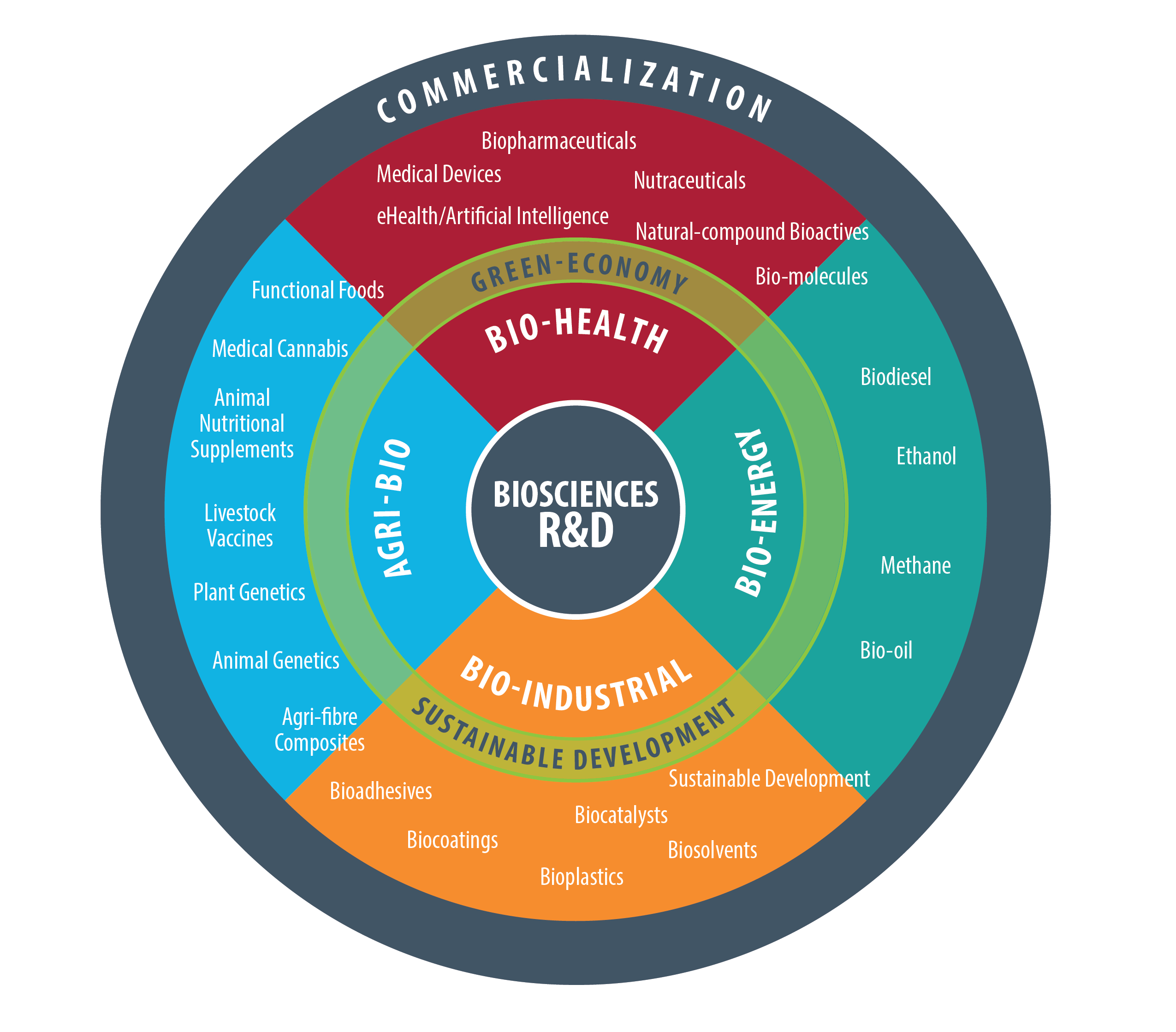 bio-economy wheel showing sectors breakdown, shown as text below