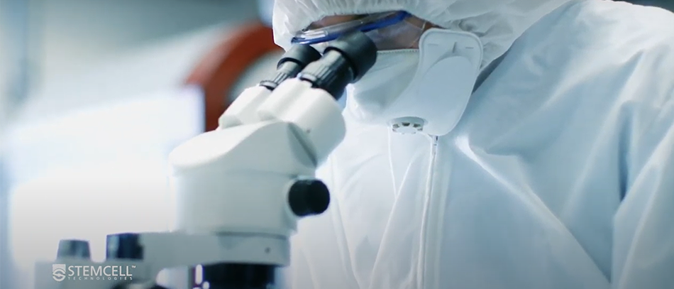 screenshot of video footage from STEMCELL. Scientist looking into microscope.